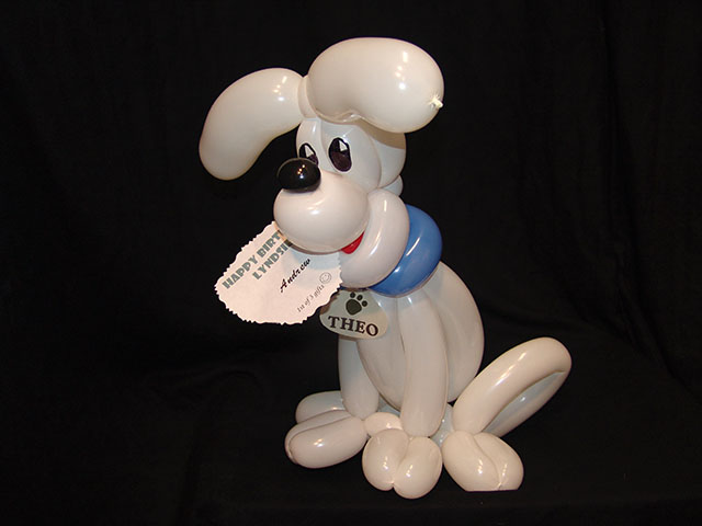 twisted balloon dog denver
